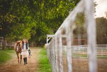 a tween girl and her horse in Keller Texas by Sunny Mays Photography