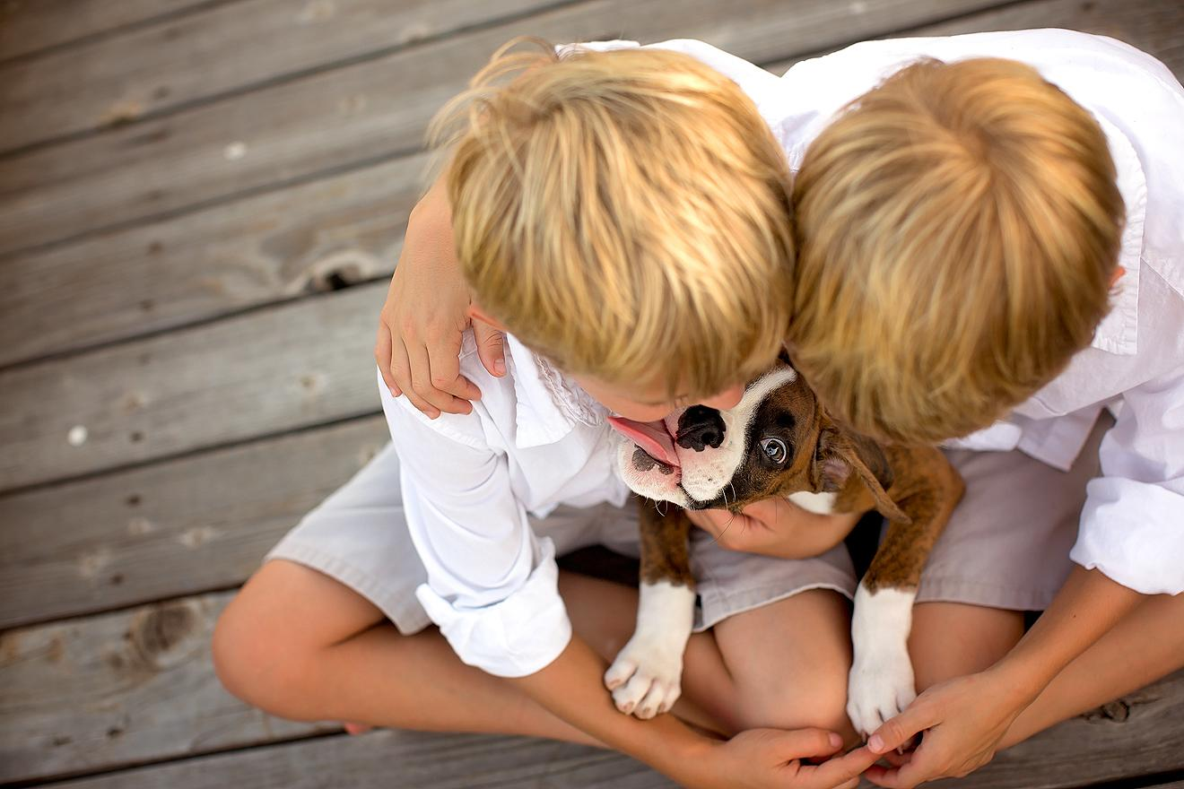 Dallas Ft Worth area best family lifestyle photographer works with pets
